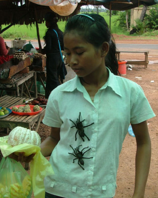Kambodza w drodze z Siem Reap do Phnom Penh