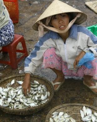Ho Ian - bazary