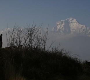 widok na Dhaulagiri 8167 m n.p.m  z Poon Hill - 3