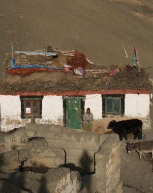 Komik, Spiti, Dolina Pin, Spiti,  Stan Himachal Pradesh