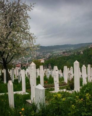 Sarajewo w rozkwicie/ zdj. Agnieszka Farhat.