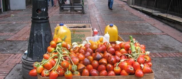 tomate del arbol. tak zwany pomidor z drzewa - pyszny sok