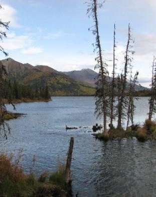 Mentasta - centralna Alaska