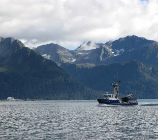 Valdez, fiordy