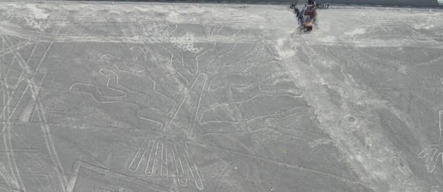 rysunki z Nazca - drzewo