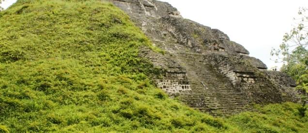 Tikal – piramida do połowy zakryta dżunglą