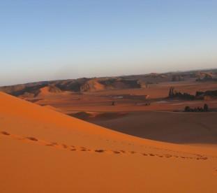Slady karawany na piaskach pustyni Sahary - om tramping klub