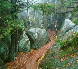 Drewniana kładka pośród skał w Szczelińcu